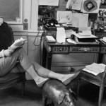 Eu Sou Ingrid Bergman: filme sobre a carreira e a vida da atriz sueca