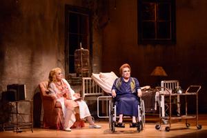 Peça: O que terá acontecido a Baby Jane,foto 3