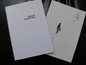 Livros: Leandro Carlos Esteves e Guilherme Junqueira: foto 5