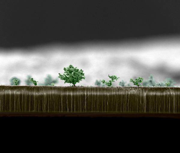 Mostra: Nanoarte, foto 6
