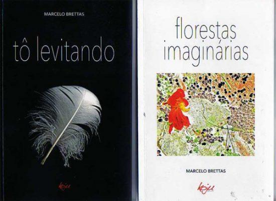 Livros: Tô levitando e Florestas Imaginárias de Marcelo Brettas, foto 1