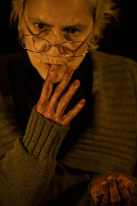 Peça: Elizabeth Costello, foto 2